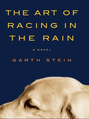 The-art-of-racing-in-the-rain