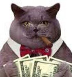 Fat-cats (2)