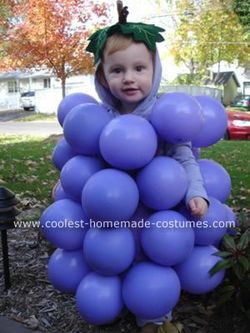 Coolest-homemade-grapes-costume-