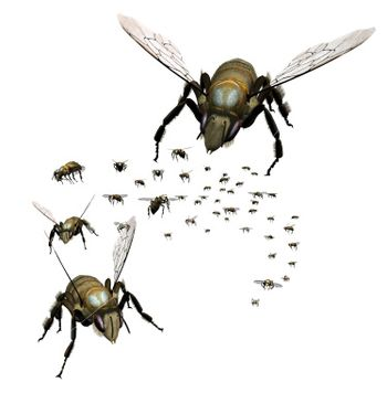 Swarm_of_bees