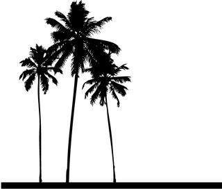Palm-trees-wall-art-01