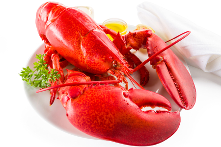 3lb_live_maine_lobsters_LRG